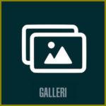 Gallery-btn-se