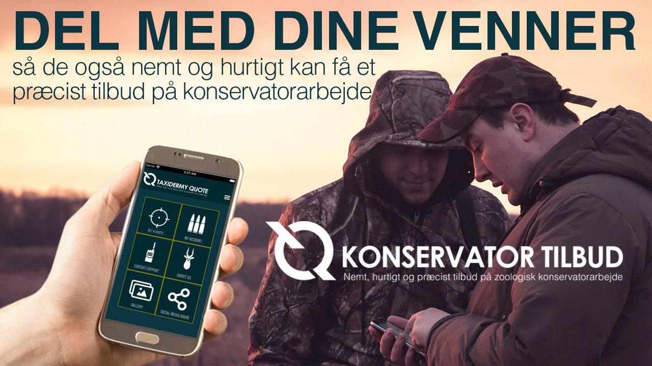 share-DK